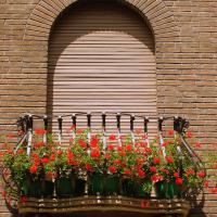 Malvisi-Ravenna-35