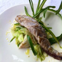 international-academy-of-italian-cuisine-in-lucca10