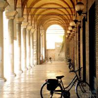 Malvisi-Ravenna-1